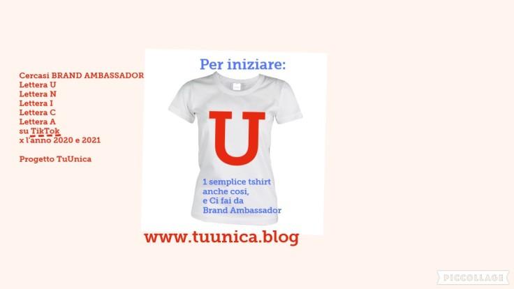 Collage Tshirt Brand Ambassador su TikTok -rifatta il 02 agosto 2020-